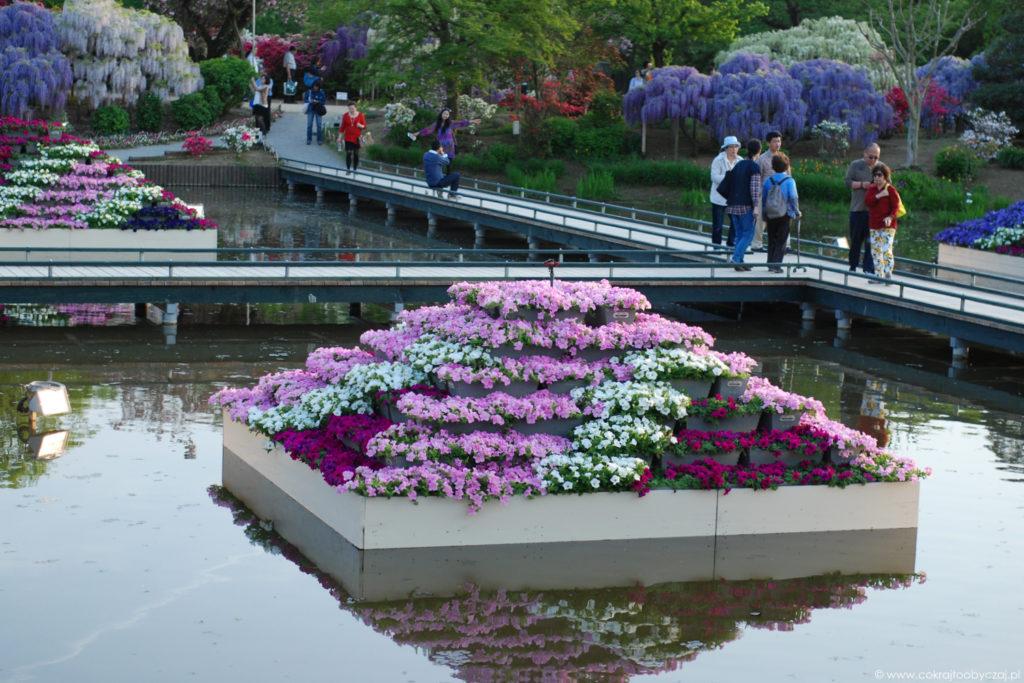 Fragment Ashikaga Flower Park