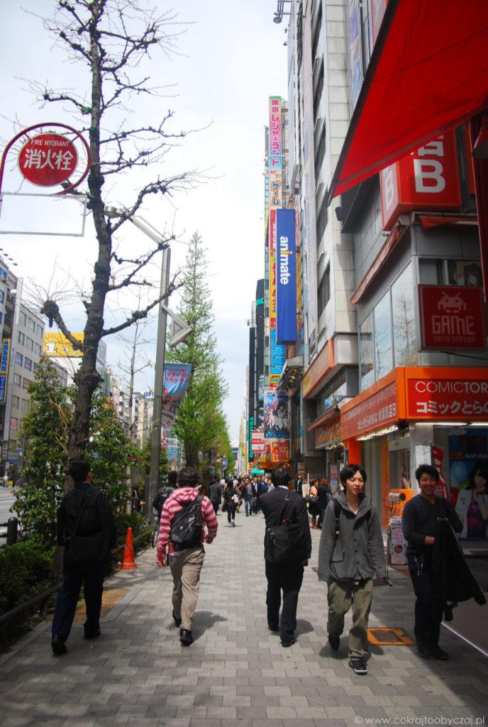 Jak to jest prowadzić badania terenowe w Japonii? [Cz. I]