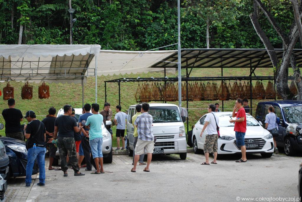 Singapur inaczej: Kebun Baru Birdsinging Club
