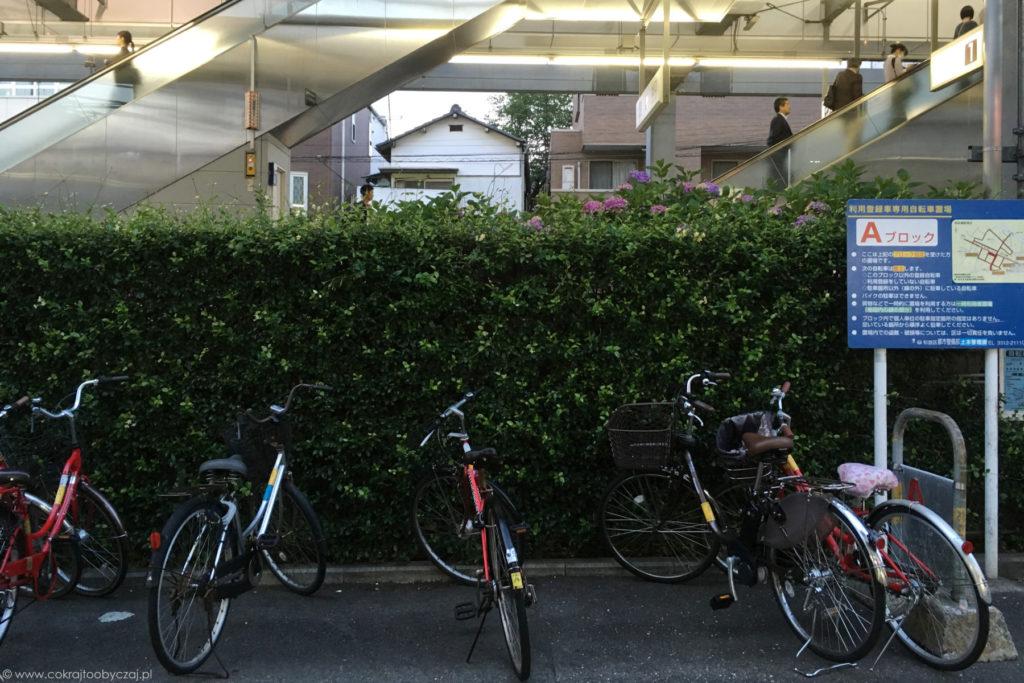 Rowery zaparkowane przy stacji to bardzo typowy widok - wielu mieszkańców dociera w ten sposób z domu na dworzec i z powrotem.