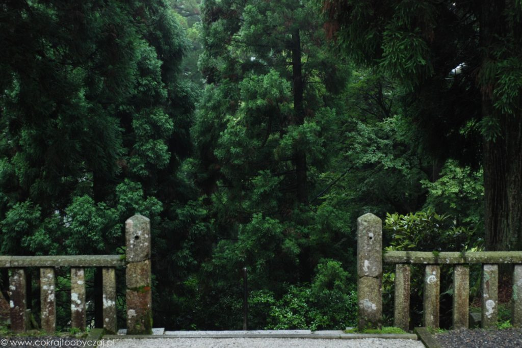 Kamienne ogrodzenie i morze zielonych drzew na górze Hiei.