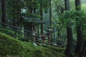 Stary las, kapliczka i droga do Enryaku-ji.