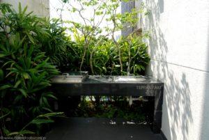 Stół do teppanyaki oraz rośliny w condo