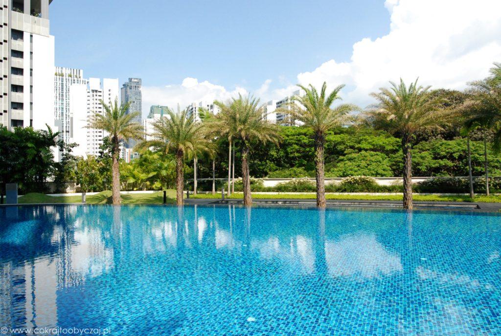 Basen i palmy na terenie condo w Singapurze