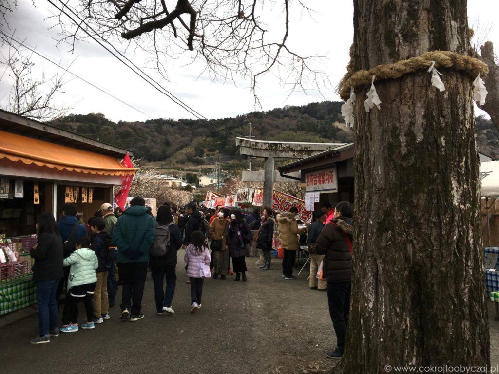 Japończycy przechadzający się wśród stoisk podczas ume matsuri w lutym.