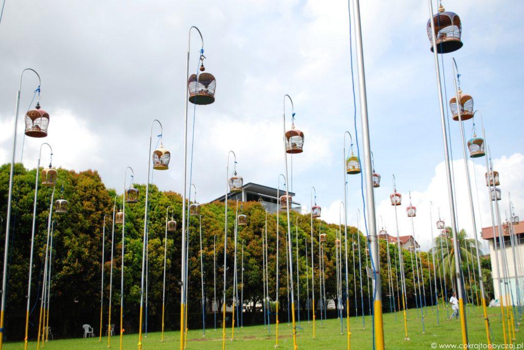 Klatki na ptaki w Kebun Baru Birdsinging Club w Singapurze.